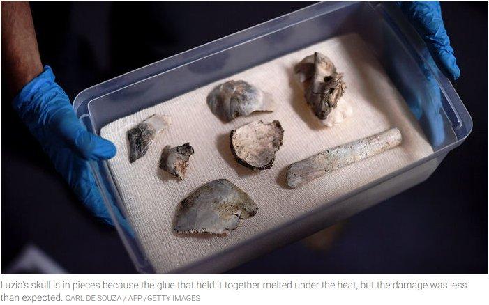 Encontrados restos da Luzia fóssil que estava no Museu Nacional