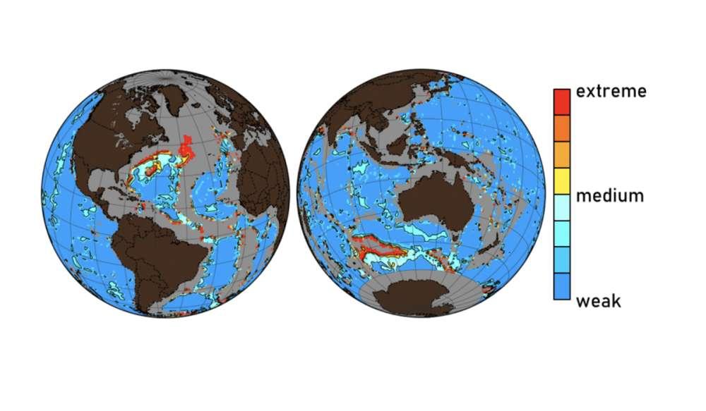 Estudo indica que os oceanos estão ficando ácido demais