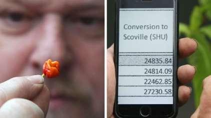 Criada a pimenta mais forte do mundo