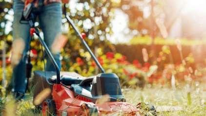 Mulher pede ajuda com a grama, mas se surpreende com resposta