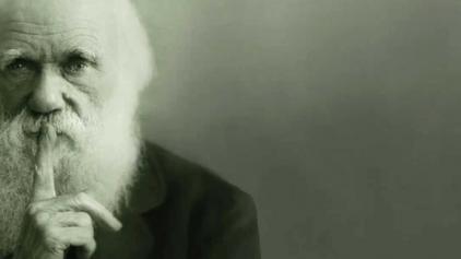 Charles Darwin economista