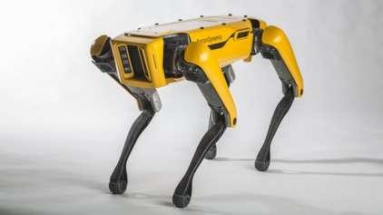 Robôs agora sabem abrir portas: O fim está próximo