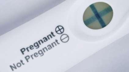Sapos e coelhos já foram usados para teste de gravidez