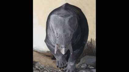 Novo estudo descobre os maiores mamíferos pré-históricos
