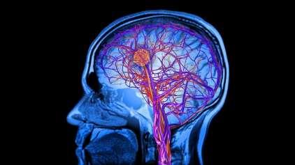 """Cientistas descobrem que nosso cérebro """"se come"""" se não dormir"""