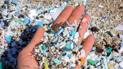 Cientistas confirmam que os humanos têm plástico no intestino