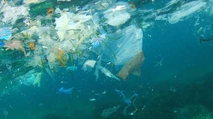 Mergulhador flagra quantidade absurda de plástico na água