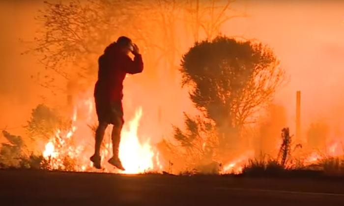 Homem enfrenta fogo para salvar pequeno coelho