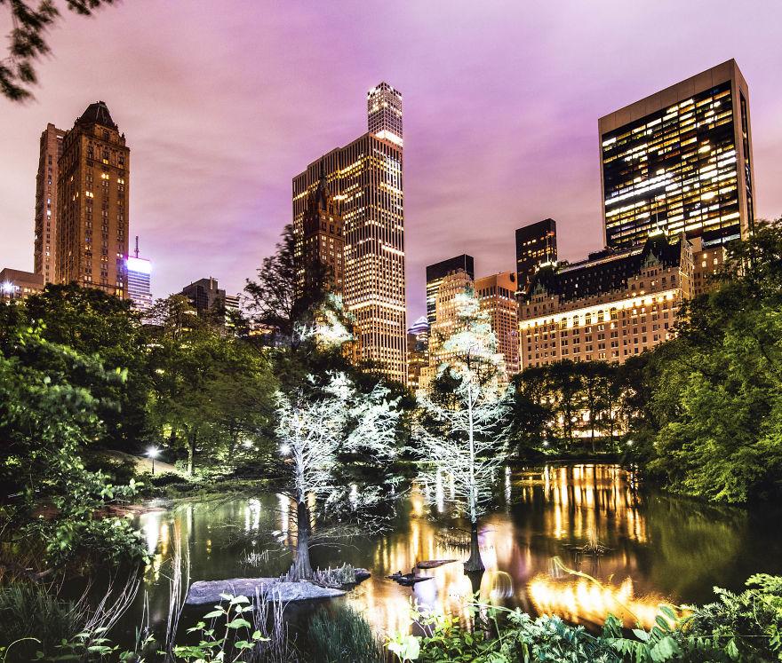 Artista muda o Central Park usando belíssimas projeções de luz