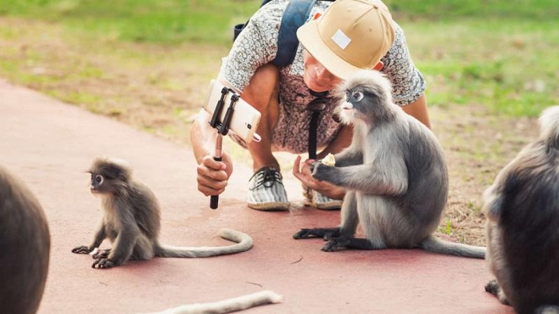 Instagram quer te dizer algo sobre selfies com animais selvagens