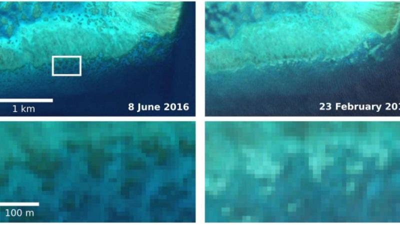 Embranquecimento da Barreira de Corais é visto do espaço