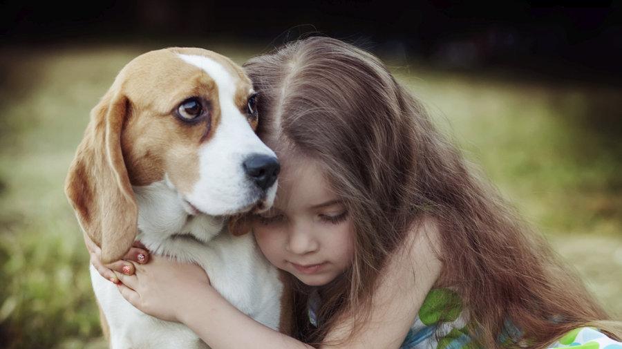 Cachorros podem ajudar crianças com eczema e asma, aponta estudo