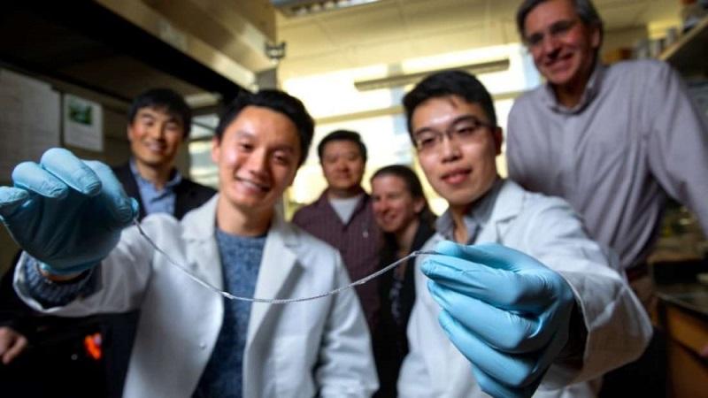 Novo implante em forma de fio pode ser a cura da diabetes