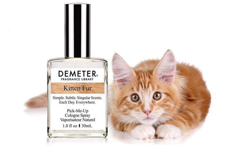 Empresa lança perfume